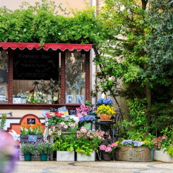 大聖堂広場のフレンチスタイル花屋