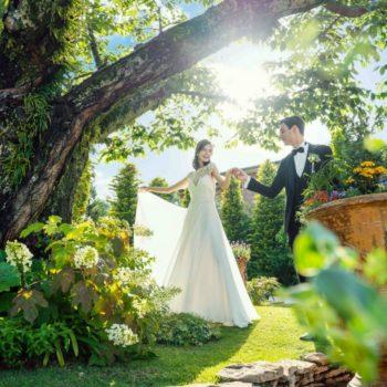 緑と花に囲まれたシンボルツリー